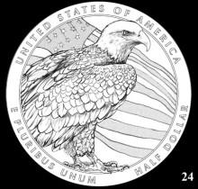 Eagle_24