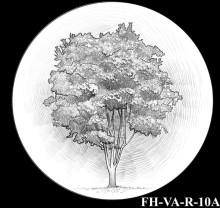 FH-VA-R-10A